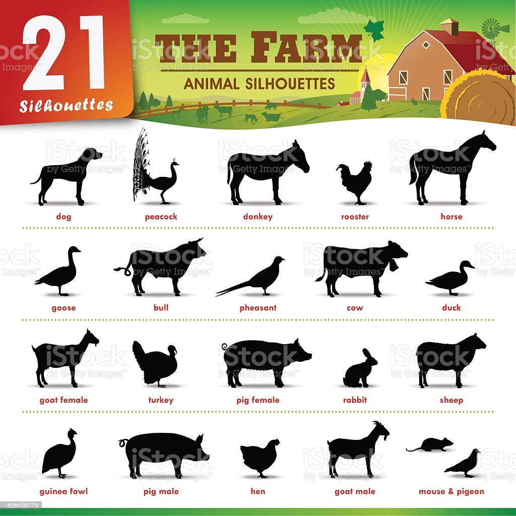 Twenty one Farm animal silhouettes vector art illustration