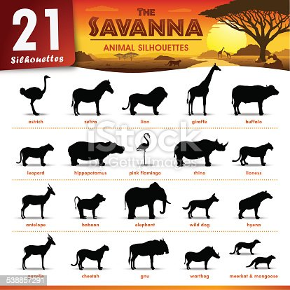 Set of 21 Silhouettes representing different Savanna Animal