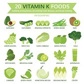 twenty vitamin k foods, info graphic, food vector