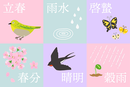 Twenty-fourth Seasonal Cycle - Spring Seasonal Set