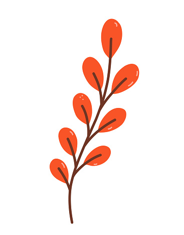 Twig with orange leaves isolated on white background. Vector hand-drawn illustration in cartoon flat style. Perfect for your project, cards, invitations, print, decorations.