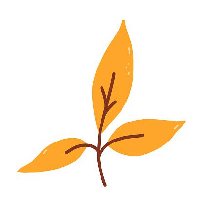 Twig with orange leaves isolated on white background