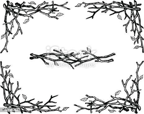 istock Twigs 165680833