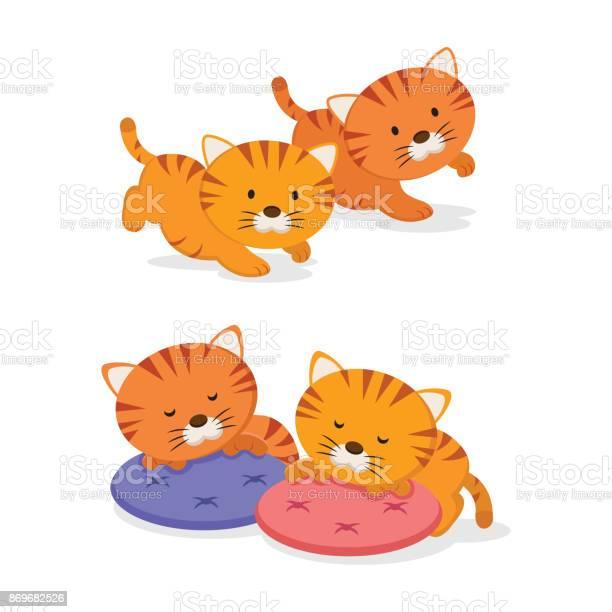 Twin kittens vector id869682526?b=1&k=6&m=869682526&s=612x612&h=fsghytqclu2adbuv 2q4s3iklhpi9wr9abpy jha5a4=