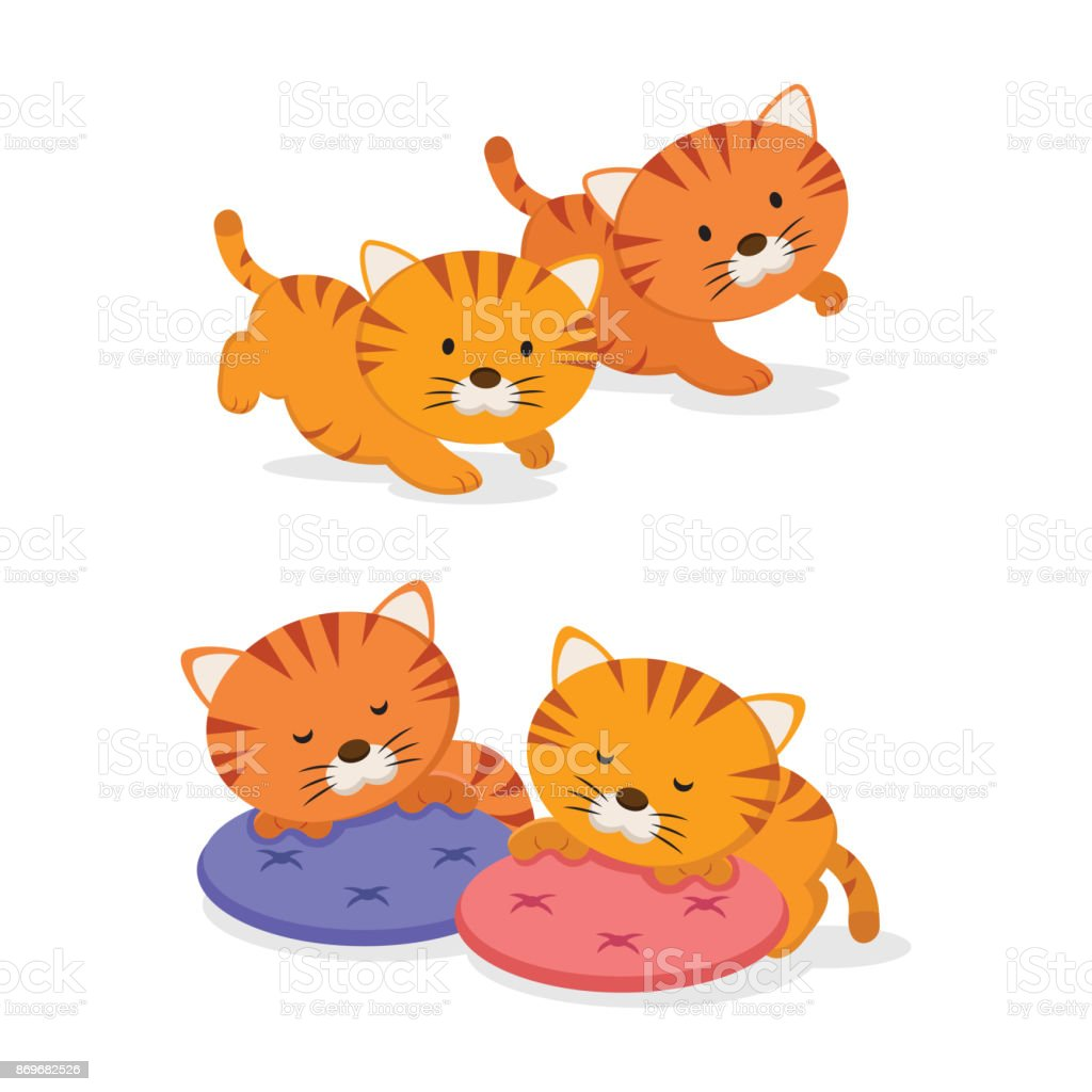 Twin kittens vector art illustration