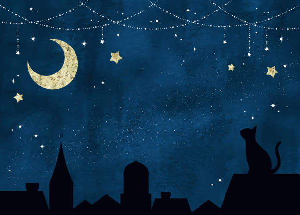 Twinkle stars, moon and cat at night Twinkle stars, moon and cat at night night stock illustrations