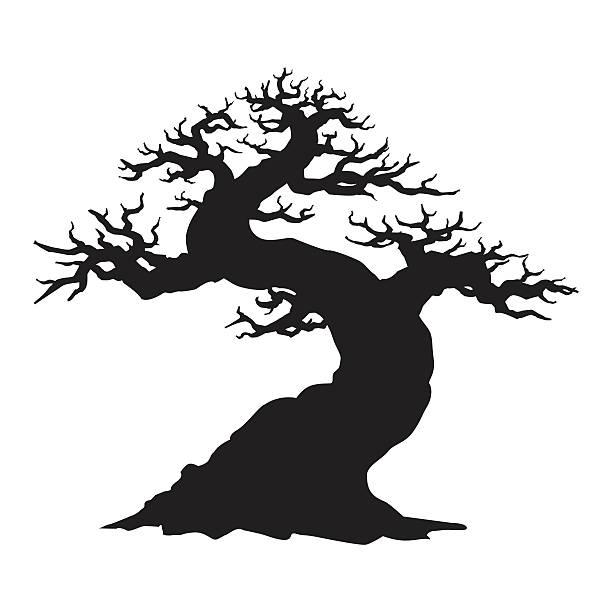 verdrehte bonsai - stammes tattoos stock-grafiken, -clipart, -cartoons und -symbole