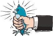 Twittering Bird in Hand