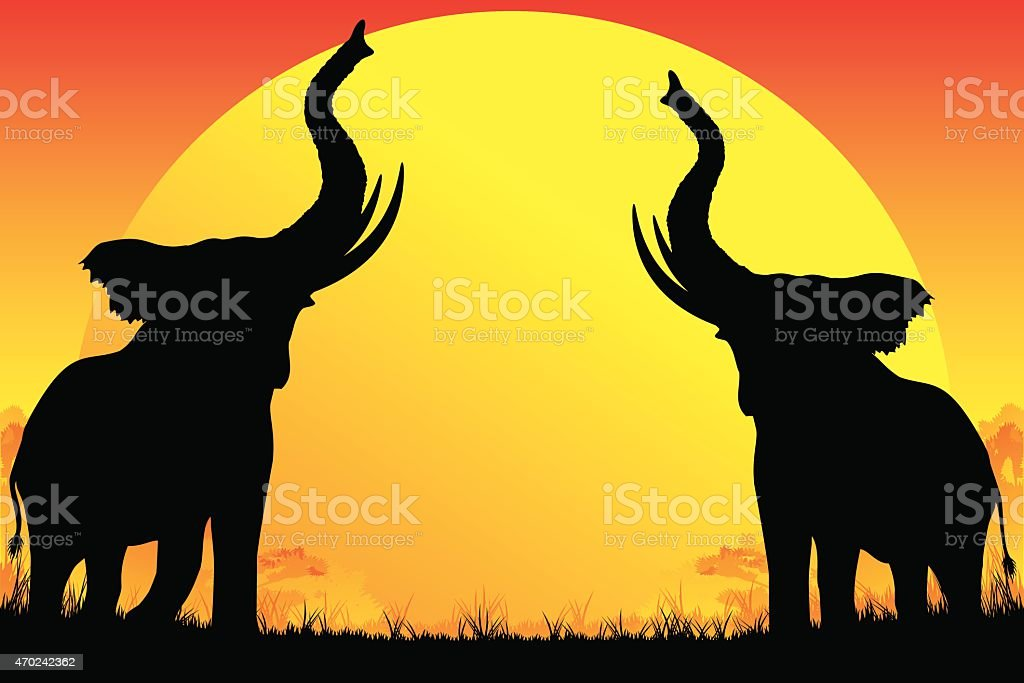 Two African Elephants silhouettes are trumpeting on hot sun background
