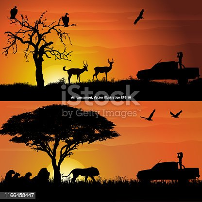 Two african landscapes at sunset, with a girl with binoculars, impalas, lions and birds. Vector illustration EPS 10