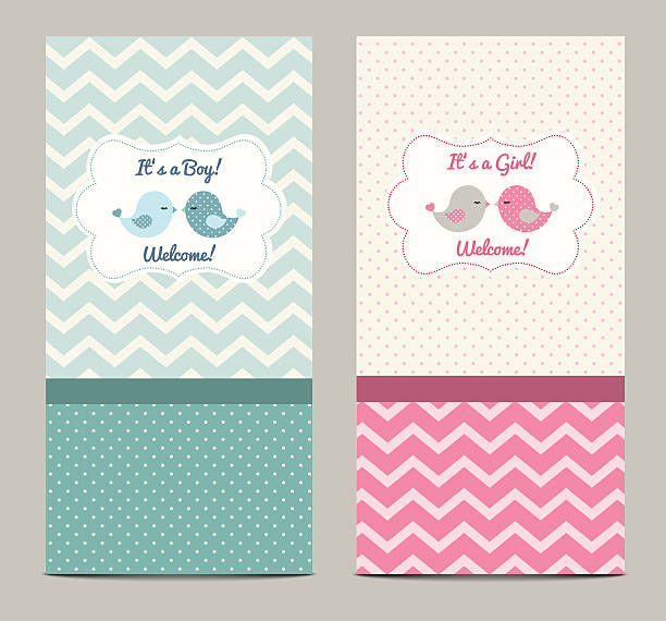 Two baby showers, illustration Two baby showers with cute birds, vector illustration, eps 10 with tranparency baby girls stock illustrations