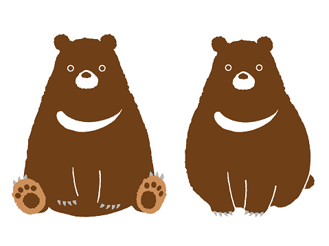 two bears in various poses