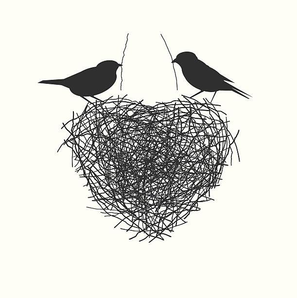 stockillustraties, clipart, cartoons en iconen met two birds making heir nest - romantiek begrippen