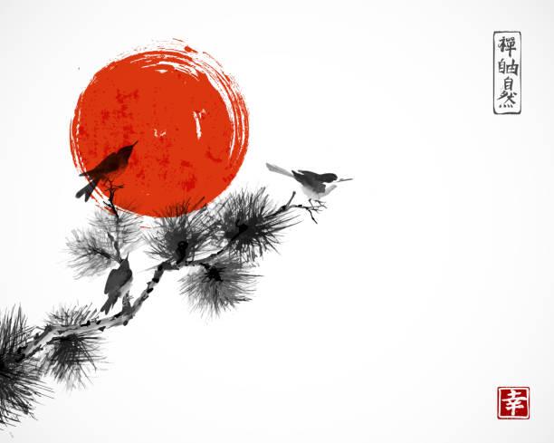 illustrations, cliparts, dessins animés et icônes de deux oiseaux sur la branche d'arbre de pin et grand soleil rouge. traditionnel oriental encre peinture sumi-e, u-sin, go-hua.  hiéroglyphes - zen, nature, liberté, bonheur - art
