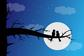 Two birds paired in the moonlight at night