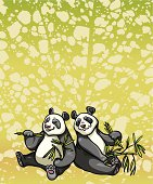 Two cartoon funny pandas are sitting and eating bamboo leaves on a green abstract background