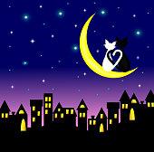 cat,moon,city,night,love,animal,above,sitting