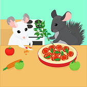 two chinchillas are preparing a vegetarian dish for lunch. thick cartoon gray and white chinchillas went on a diet