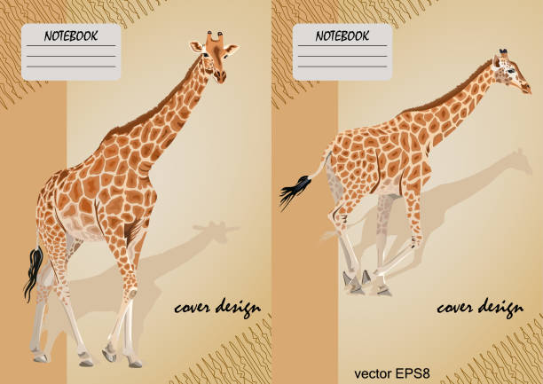 two covers for notebooks with a giraffe on a beige background - giraffe stock illustrations