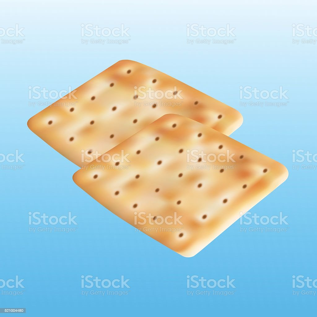 Two Cracker illustration vector art illustration
