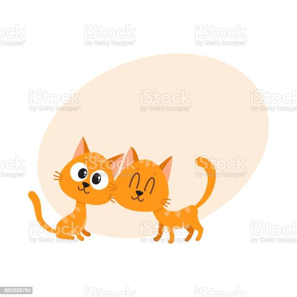 Two cute and funny curious cuddling red cat kitten characters vector id660856784?b=1&k=6&m=660856784&s=612x612&h= qskrlg4xmw95tytf cpdr1rbg2k4leeqpmcogusaa8=