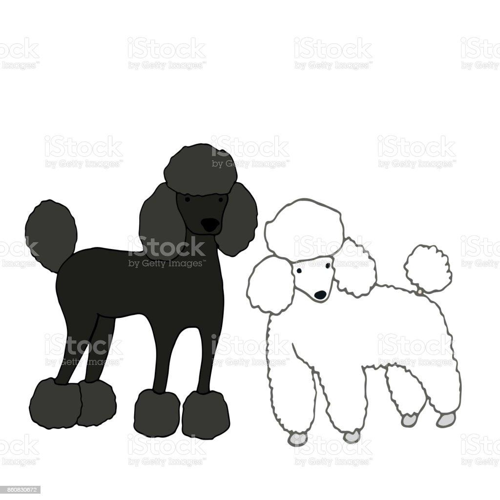Zwei Susse Schone Hunde Eine Schwarze Zweitens Weiss Isoliert Auf