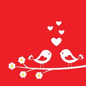 Two cute birds in Love