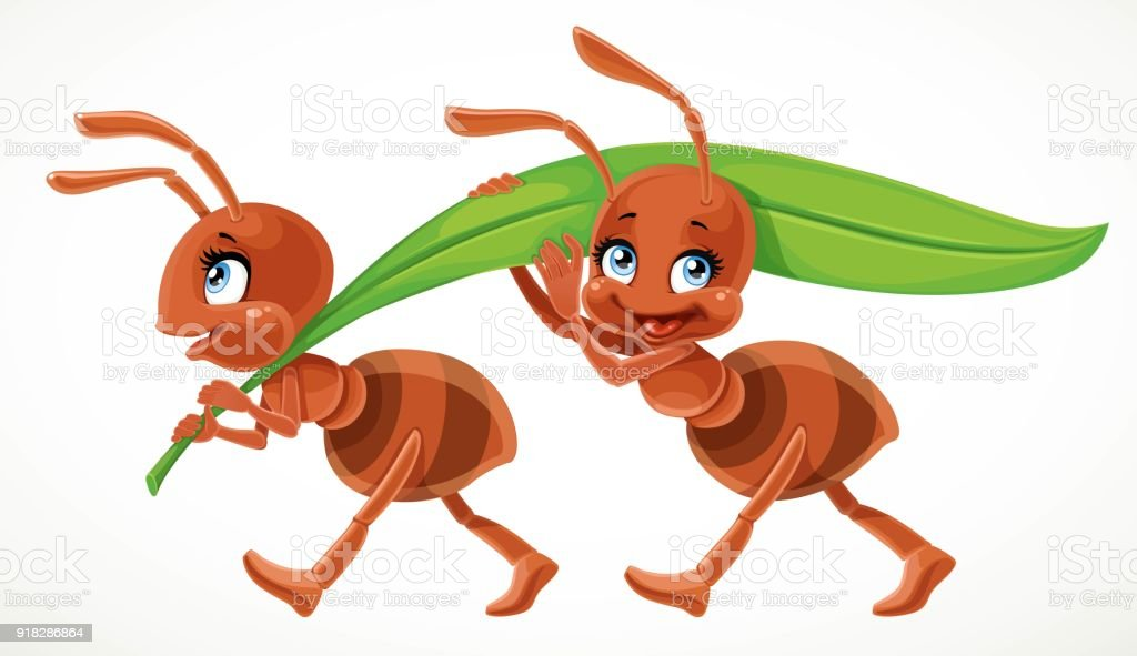 Two cute cartoon ant carry green juicy blade of grass isolated on a white background vector art illustration
