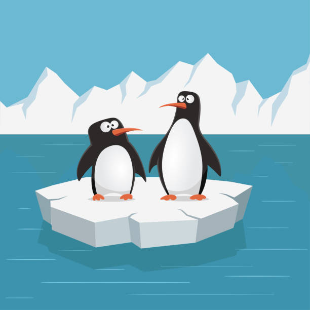 two cute penguins on ice floe. vector illustration. - penguin stock illustrations