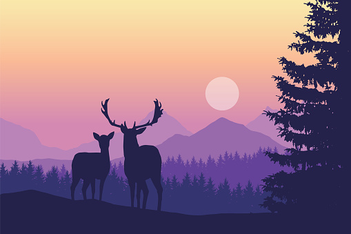 Two deer standing in coniferous forest under mountains and yellow purple sky - vector, with space for text