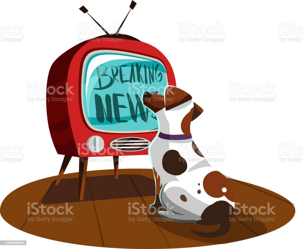 Two Dogs Watching The News On Tv Breaking News Vector Illustration Stock  Illustration - Download Image Now - iStock