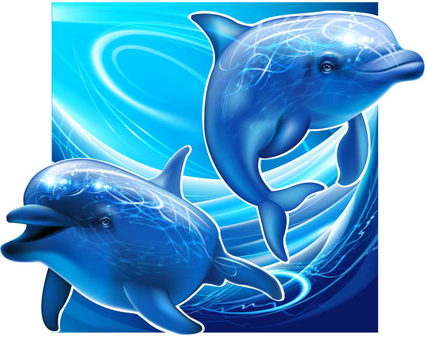 two dolphins under sea - dolphin stock illustrations
