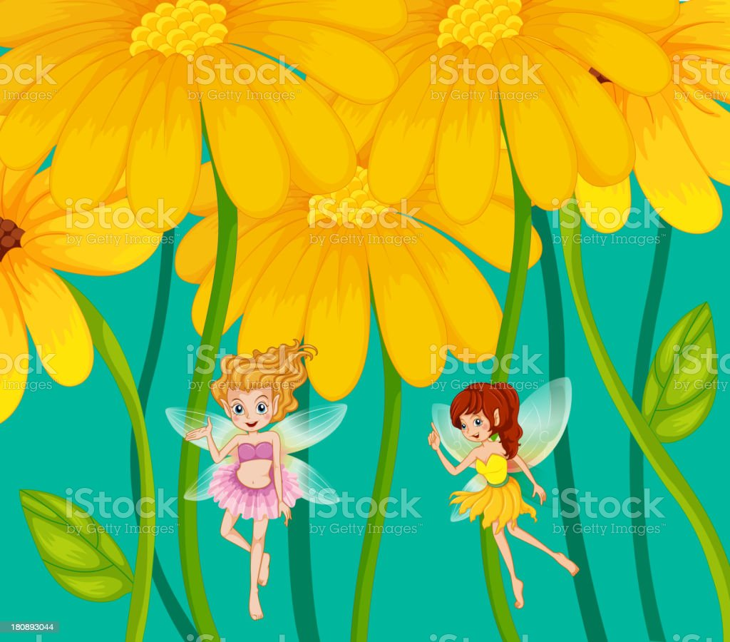 Two fairies under the flowers royalty-free stock vector art