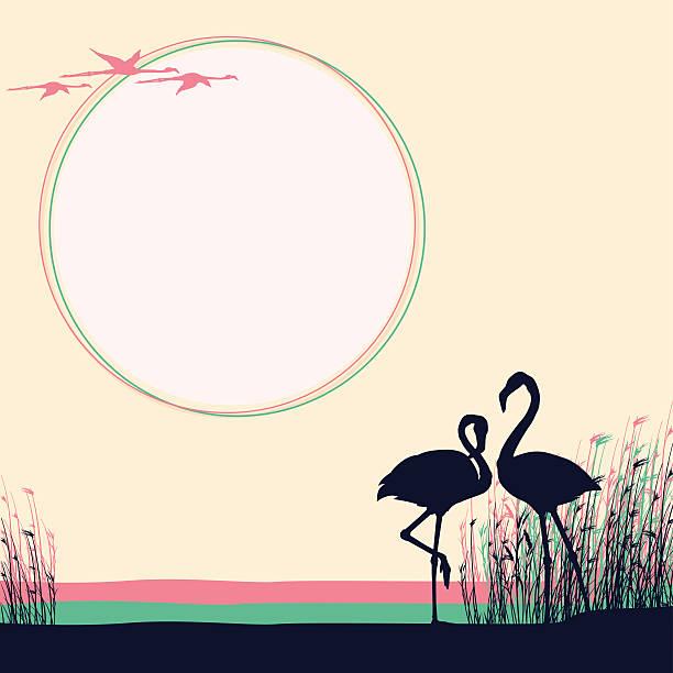 Deux flamants roses dans la nature sauvage - Illustration vectorielle