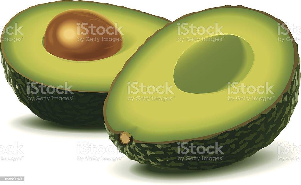 Two half avocados royalty-free stock vector art