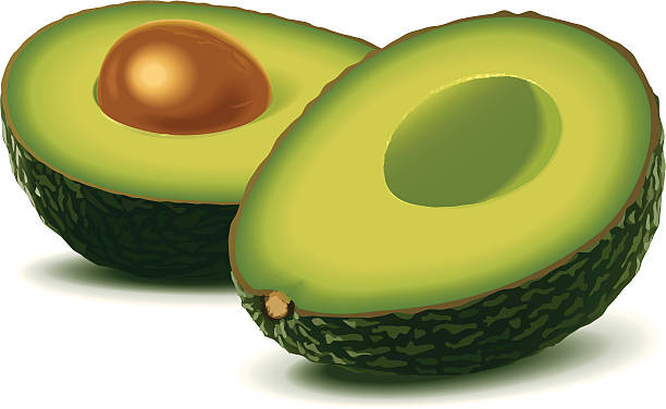 Two half avocados Vector illustration of two half avocados with a stone. High-res. JPG (3500 px wide) and print-PDF included. Done with simple gradients and blends. See also the other avocado-illustration in my portfolio. avocado stock illustrations