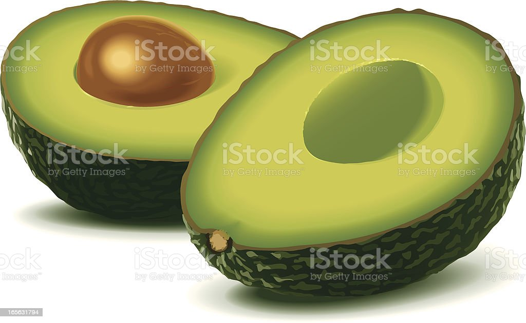 Two half avocados vector art illustration