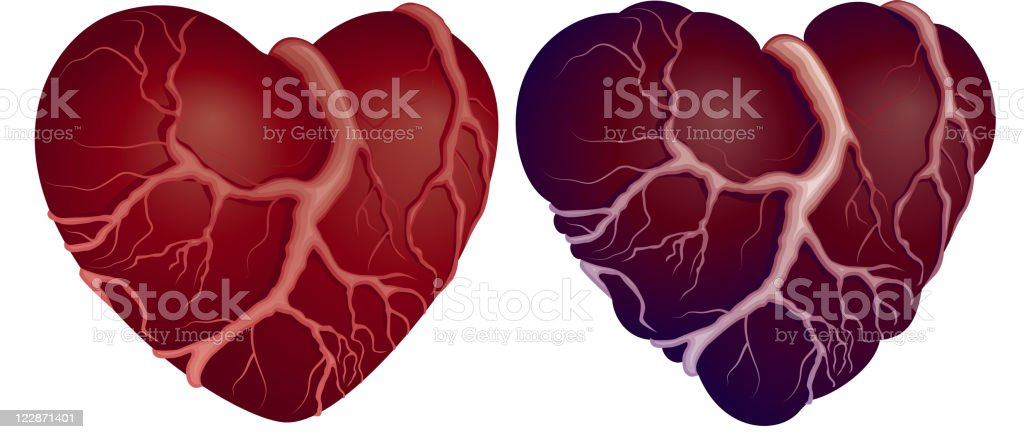 Two heart shapes royalty-free stock vector art