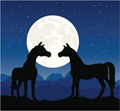 Two horses in silhouette at night with romantic moon behind them begin a courtship.