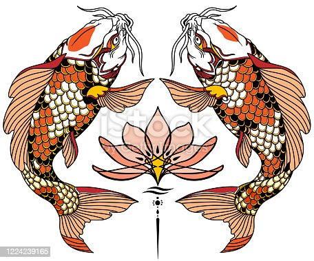 two Japanese koi carp fishes and water lily flower. Tattoo. Vector illustration