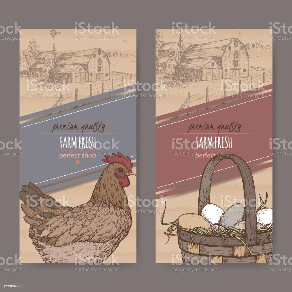 Two labels with farmhouse, color chicken and eggs on cardboard texture. vector art illustration