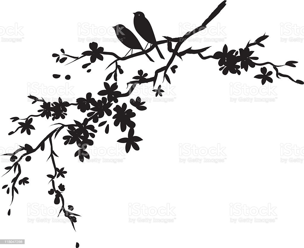 Two little birds sitting on Cherry blossoms branch black silhouette vector art illustration