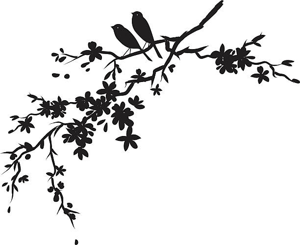 Two little birds sitting on Cherry blossoms branch black silhouette Two little birds sitting on Cherry blossoms branch silhouette. Cherry blossoms Sparrows & Sakura.  Black Sparrow and Cherry Blossoms Branch Silhouette. Cherry blossom branch with flowers in bloom.  The cherry blossom flowers are various sizes.  The branches has lots of detail and a full bloom flowers. bird patterns stock illustrations