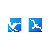two logos of a seagull bird inside square shapes
