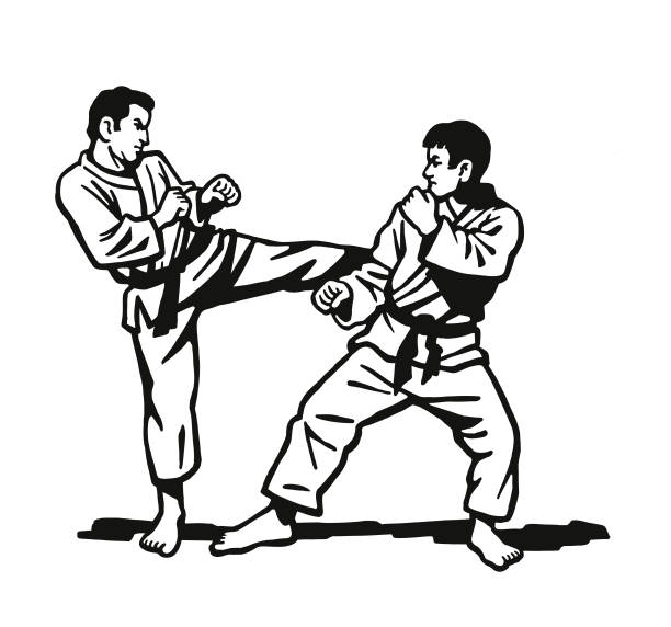 two men practicing karate - martial arts stock illustrations