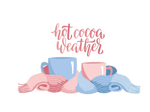 Two mugs in knitted scarf. Composition of 2 cups with lettering - Hot cocoa weather. Cups, wrapped in warm scarf. Atmosphere for winter relax. Blue pink Flat cartoon illustration on white background