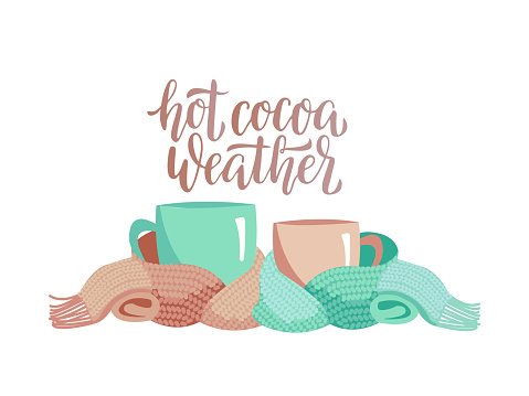 Two mugs in knitted scarf. Composition of 2 cups with lettering Hot cocoa weather. Cups, wrapped in warm scarf. Atmosphere for relax winter party. Flat cartoon illustration on white background