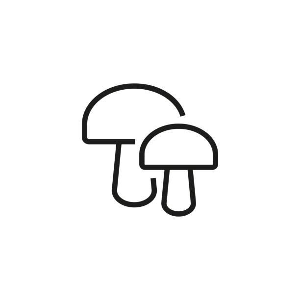 bildbanksillustrationer, clip art samt tecknat material och ikoner med två svamp-ikonen - höst plocka svamp