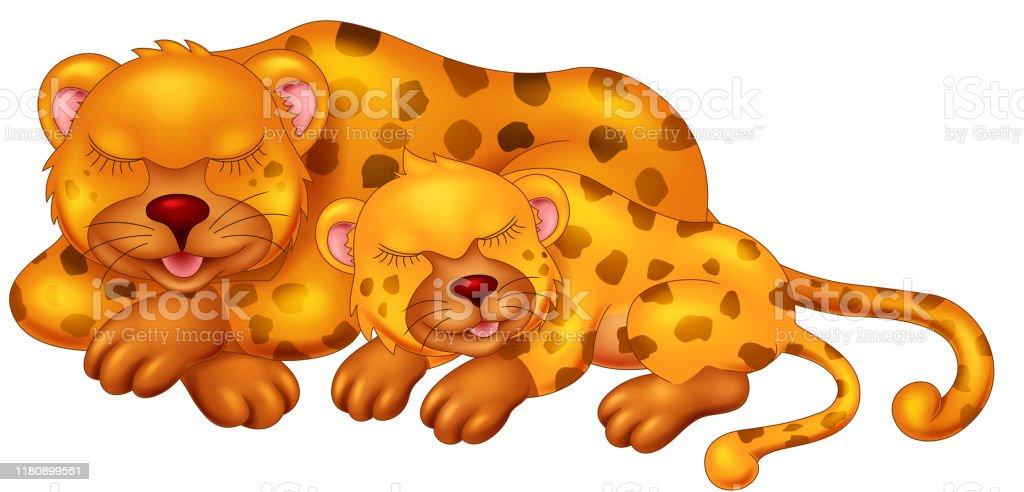 2つのオレンジヒョウ睡眠漫画 2匹のベクターアート素材や画像を多数ご用意 Istock