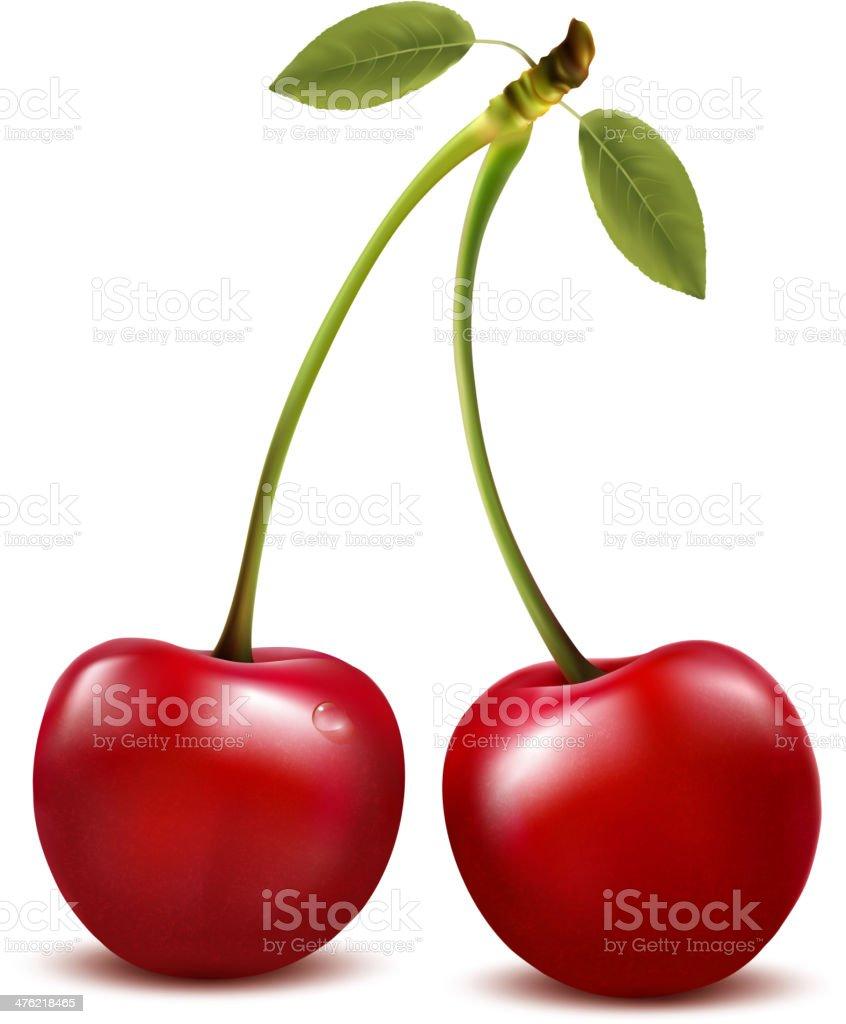 Dos rojo cereza bayas con hoja.  Vector. ilustración de dos rojo cereza bayas con hoja vector y más vectores libres de derechos de alimento libre de derechos